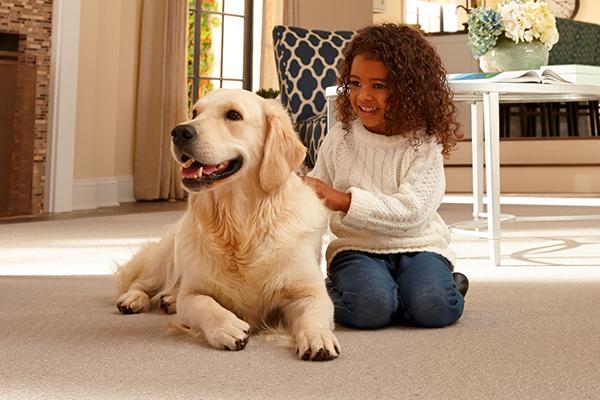 About Our Carpet Store Abbey Carpet Amp Floor Harrisburg